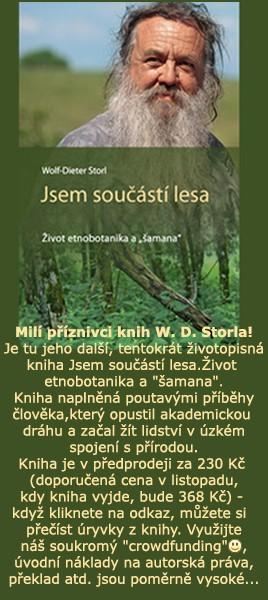 Jsem součástí lesa